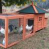 Pollaio in legno per galli e galline ovaiole