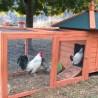 Pollaio in legno con casetta e recinto