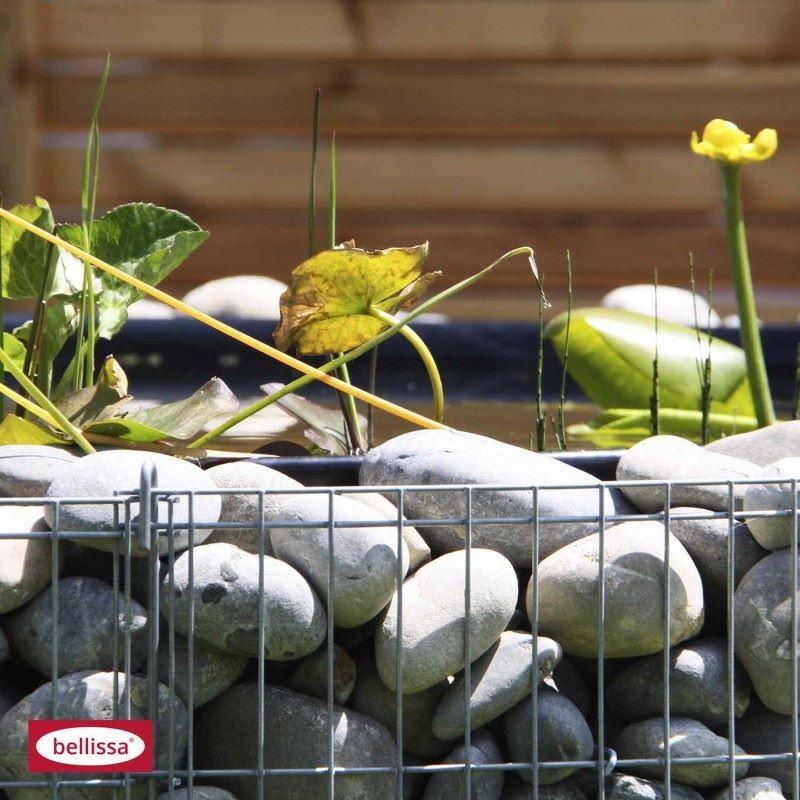 Laghetto artificiale da giardino con gabbione rotondo for Animali da laghetto artificiale