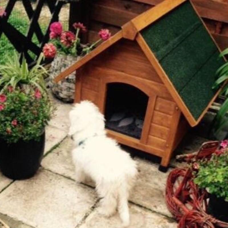 Cuccia per cani o gatti da esterno in legno - Cuccia per gatti ikea ...