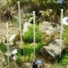 Luci solari Led per illuminazione giardino