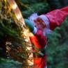Babbo Natale su scala luminosa da esterno