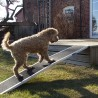 Rampa per cani di grossa taglia
