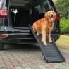 Rampa cani per auto