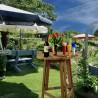 Tavolo alto da bar, birreria, catering o giardino in legno