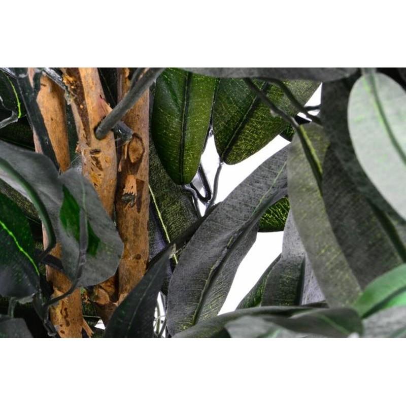 Piante da arredo interno noleggio piante e fiori per for Piante finte da arredo