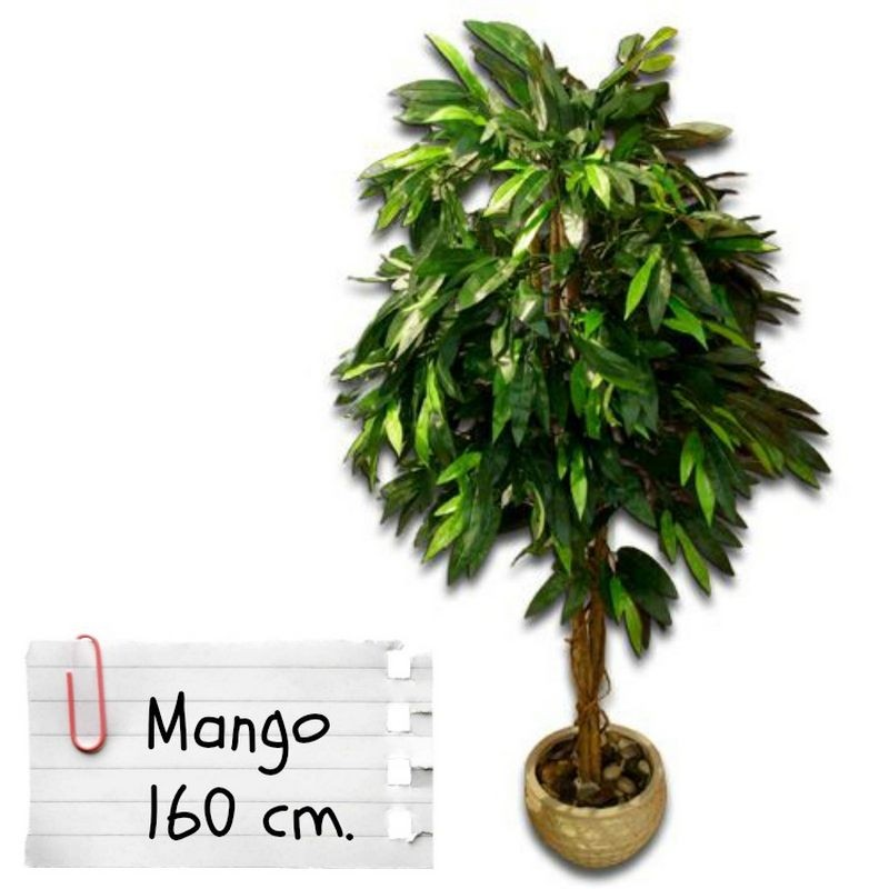 Piante finte artificiali da arredo interno mango 160 cm for Piante da interno alte