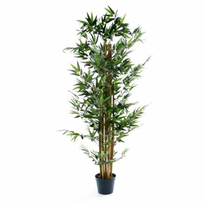 Piante finte artificiali da arredo interno bamb 170 cm for Bambu pianta