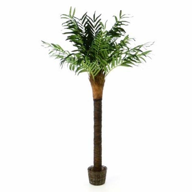 Piante finte artificiali da arredo interno palma da cocco for Piante finte da arredo