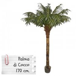 Piante finte da arredo: Palma da Cocco 170 cm.