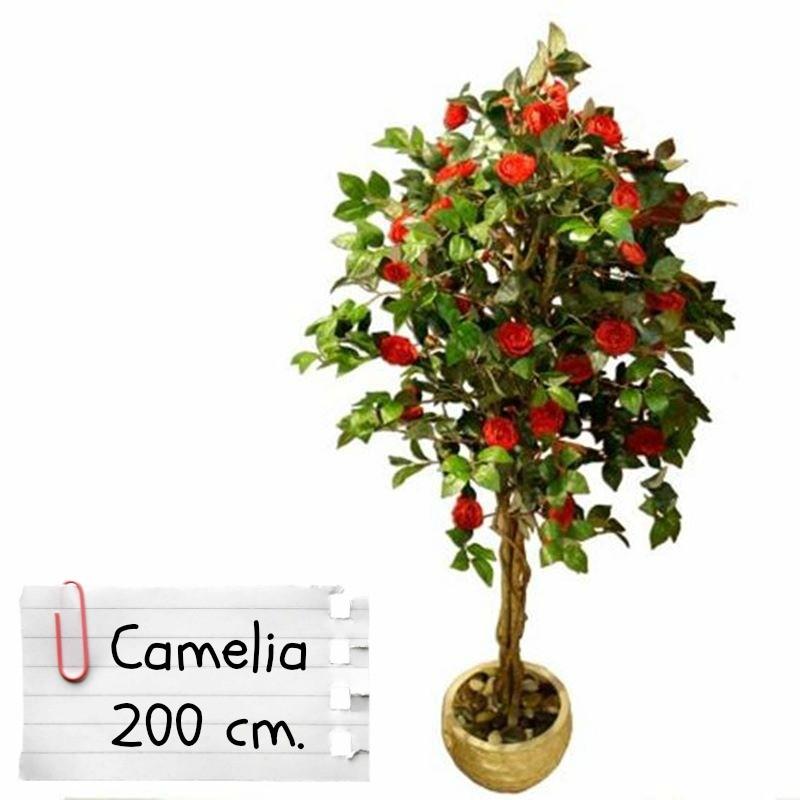 Piante finte artificiali da arredo interno camelia 200 cm - Camelia pianta da esterno ...