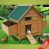 Pollaio casetta per galline ovaiole
