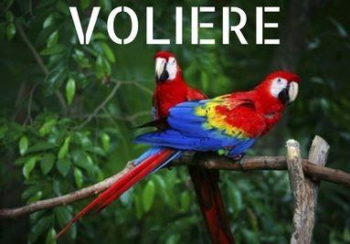 Voliere per pappagalli e uccelli